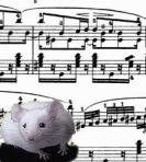 Mice and music